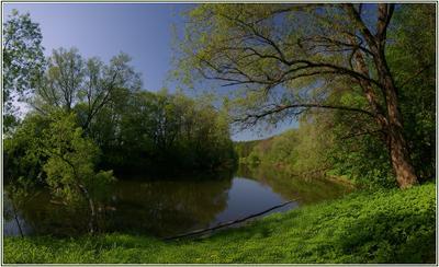 ...внезапно настигает тишина... Калужская область река Протва Черная грязь