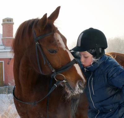 Друзья Всадница Конь