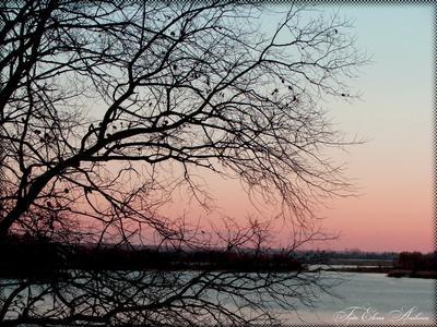 бывает осень хмурая... осень природа река деревья