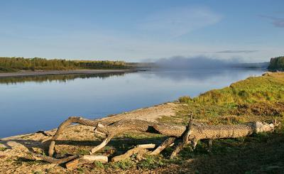 На смену холодной ночи... сибирь утро река туман берег коряга