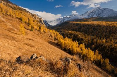 Прощание с Куйгуком алтай куйгук горы осень