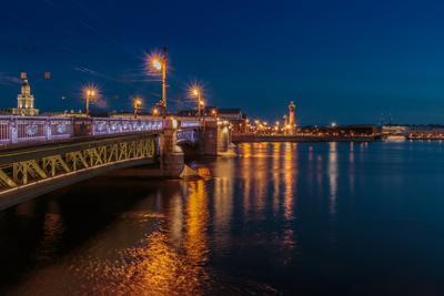 Утреннее золото синего часа Санкт-Петербург утро раннее река отражение мост Нева синий час Дворцовый