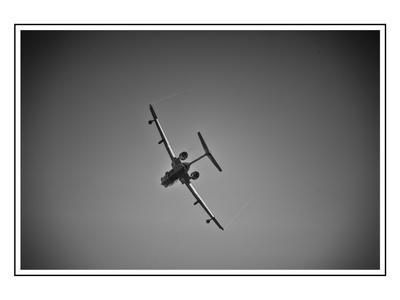 Бе-200 с тыла. Бе-200 самолётное