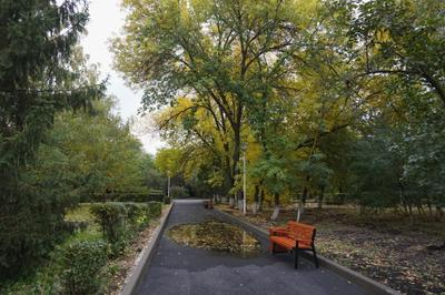 Осень... Осень парк
