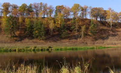 Другой берег Москва-река осень золотая Подмосковье