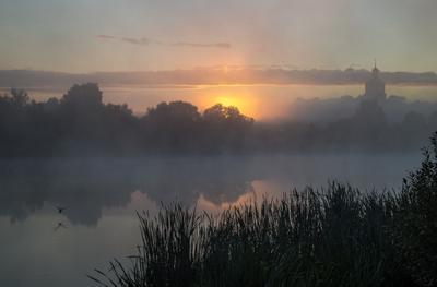 *** утро туман лето Фрязино Гребнево