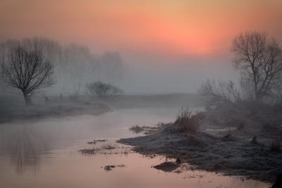 Теплеет река шерна утро туман деревья рассвет вода