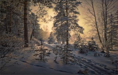 на лыжах вдоль речки Южный Урал