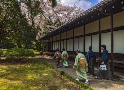 По дороге к чайному домику монахи чай весна Токио