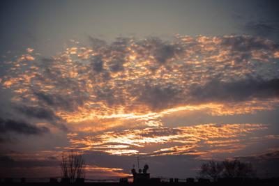 ***зимний закат закат камыш солнце краматорск белосарайская коса