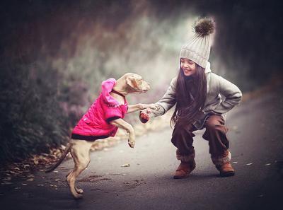 Дружба девочка собака осень щенок