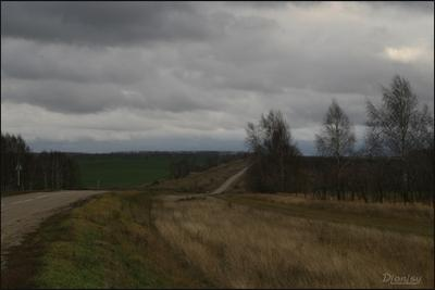 По дороге в Дивеево дорога в Дивеево