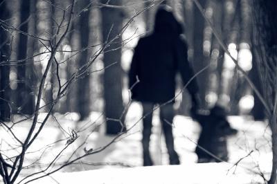 В лесу лес, зима, ребенок