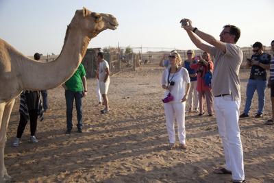 Люди и верблюд
