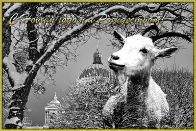 Я с миром к вам иду! Зима Исаакиевский собор Санкт-Петербург