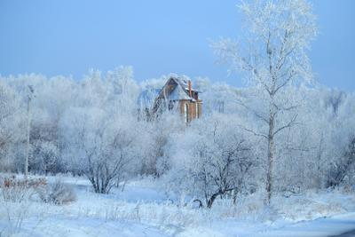 морозно иней снег зима мороз