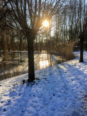 12-02-2021 Winter