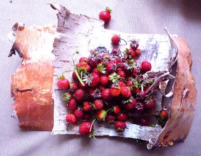 Земляника натюрморт лето ягоды земляника фото сергей сиденко