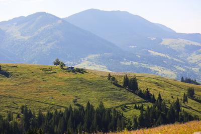 Карпаты. Карпаты горы природа