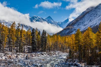 Белуха в золтой оправе Алтай горы Белуха озеро рассвет небо снег лед