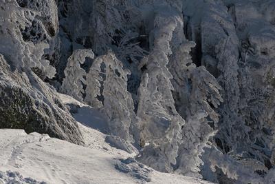 Pro царство Снежной королевы (2) Царство Снежная королева скалы кедры снег иней зима Сибирь Горная Шория Шерегеш