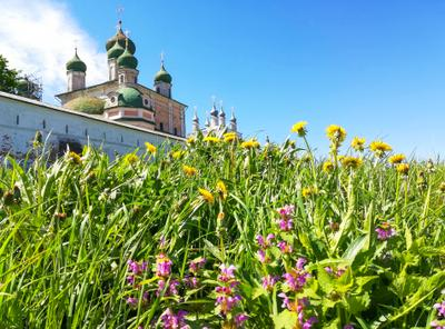 ....... Переславль-Залесский .Весна .Цветы .Храм .Фото Сайт