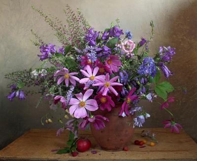 Люблю цветы, их радужные краски... Натюрморт космея лето букет цветов