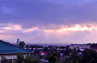 Летний дождь в Алмате