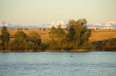 Осень в Михайловке осень, вечер, пейзаж, озеро, копны