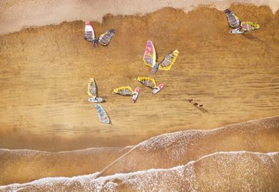 Гигантские бабочки, спящие на берегу.