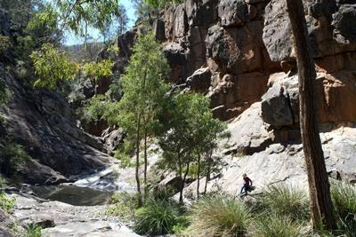 Вдоль ручья Австралия