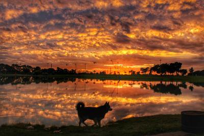Две стороны неба... закат небо отражение озеро силуэт облака вечер