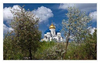 Собор Преображения Господня Собор Преображения Господня, Николо-Угрешский монастырь, г. Дзержинский