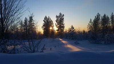 *** зима солнце