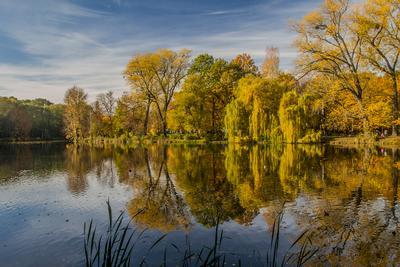 Осенний парк Калининград парк Южный озеро осень деревья листья облака