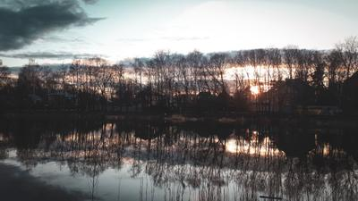 *** салтыковка пруд деревья небо