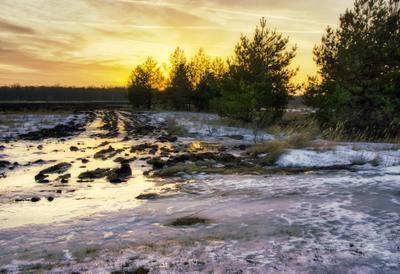 Уходящее солнце зимы пейзаж природа зима вечер закат солнце заря сосны оттепель поле лужа снег