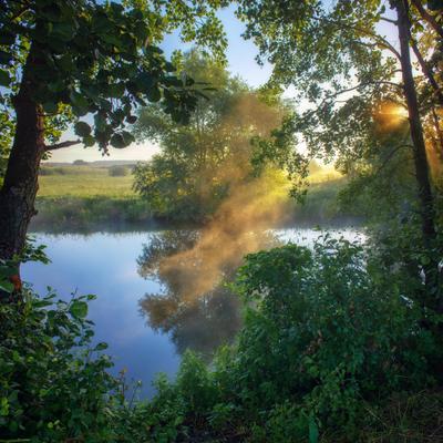 Летнее утро на берегу реки пейзаж природа туман река волчья