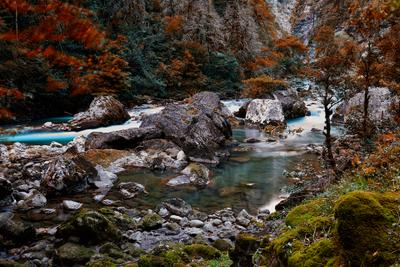 Горная река. Абхазия. река пейзаж природа осень