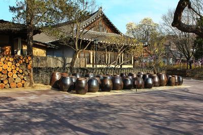 Весна в Корейской Деревне 6