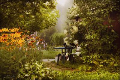 В саду гортензия цветет....