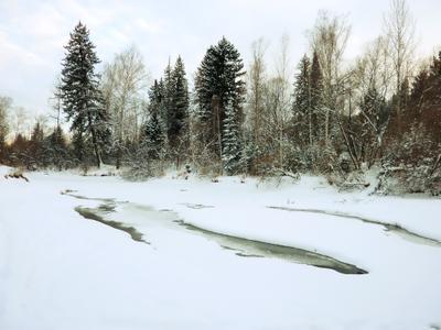 Зимой у речки.
