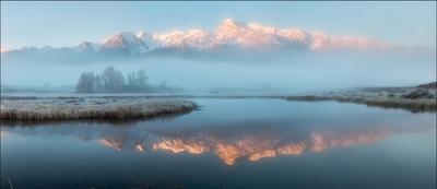 Куркурек в тумане #3 Алтай Северо-Чуйский хребет Ештыкель осень