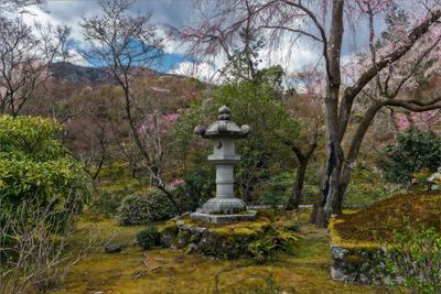 Уголок сада храмового комплекса Тэнрюдзи сад Япония фонарь
