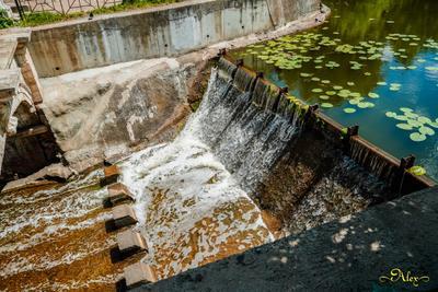 Плотина в Кузьминках плотина парк вода лето