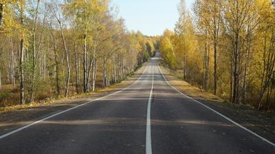 Дорога в осень Осень шоссе деревья