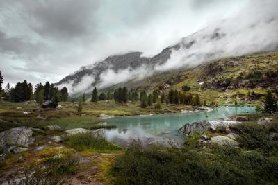 Озеро Куйгук природа горы пейзаж озеро лес туман