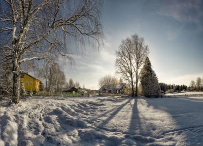 Весна с зимним характером... Вологодчина природа весна деревня