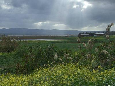 Изреэльская долина, Перекресток Кфар Барух