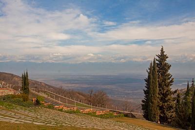 Сигнахи. Грузия Грузия Сигнахи Алазанская долина Горы небо дерево вино